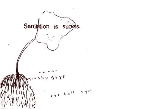 Sanitation is success